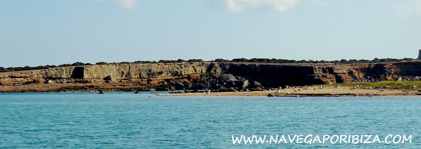 excursion barco en ibiza y formentera
